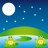 Landscape with frogs. Over night background. vector Royalty Free Stock Photography