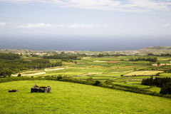 Landscape From Azores In Portugal Stock Images