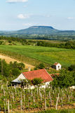 Landscape From Hungary Stock Photos