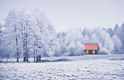Landscape in frost Stock Images