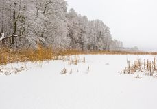 Landscape of frozen lake covered by snow Royalty Free Stock Image