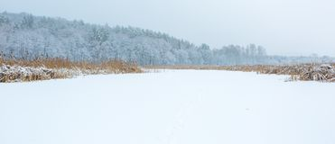 Landscape of frozen lake covered by snow Stock Photo