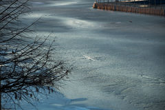 Landscape of frozen lake in winter Stock Images
