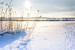 Landscape of frozen sea. Royalty Free Stock Photos