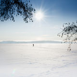 Landscape of frozen sea with skier on the ice. Stock Photos