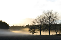 Landscape. A landscape full of fog Stock Photo