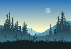 Landscape with full moon Stock Images