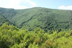 Landscape Galicia Stock Photography