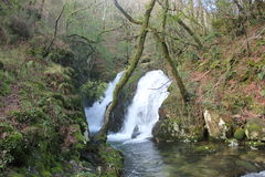 Landscape Galicia. Small river fall in Serra de Outes. Galicia Stock Images