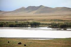 Landscape of gannan Stock Images
