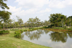 Landscape garden with pond Royalty Free Stock Image