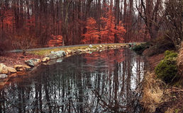 Landscape garden with red leaves,DC. Landscape garden,frozen river,reflections,red leaves,DC Stock Photos