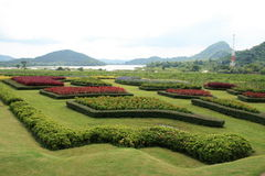 Landscape garden in Thailand. Cut hedgerow in a landscape garden in Thailand Royalty Free Stock Image