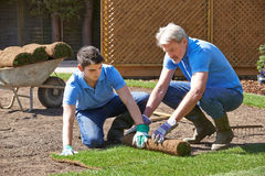 Landscape Gardeners Laying Turf For New Lawn Royalty Free Stock Photos