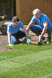Landscape Gardeners Laying Turf For New Lawn Stock Photo