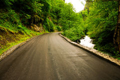 Landscape of Georgia. Landscape, road, forest, mountain of Georgia Stock Photography