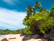 Landscape goa Royalty Free Stock Photos