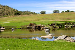 Landscape on the golf course. Beautiful landscape on the golf course. Bird sitting on rock in the lake Stock Images