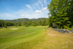Landscape on a golf course with green grass, trees, beautiful blue sky and stone fence Stock Images