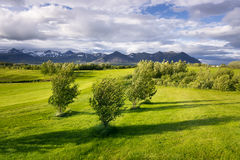 Landscape with golf courses in Iceland. Golf courses. Sunny landscape with green grass and mountains. The sky with clouds. Iceland Royalty Free Stock Images
