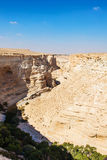 Landscape of the gorge in the Negev desert Royalty Free Stock Photography