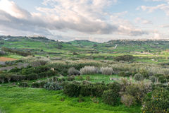 Landscape in Gozo, Malta Royalty Free Stock Photo