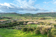 Landscape in Gozo, Malta Royalty Free Stock Photography
