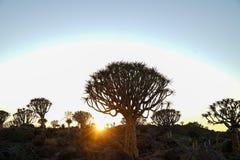 Landscape gradually comes alive as sun rises over horizon Stock Photo