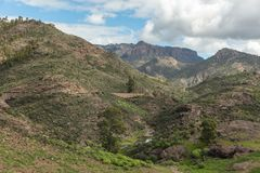 Landscape of Gran Canaria with brook. In Tejeda Royalty Free Stock Photo