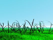 Landscape with grass stock photo