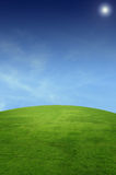 Landscape with grass field Royalty Free Stock Images