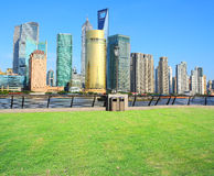 Landscape grass prospects the Shanghai Lujiazui city buildings o Royalty Free Stock Image