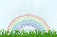 Landscape with grass and rainbow. Vector Stock Image