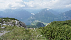 Landscape grass and rock on Mountain in Hallstatt Stock Image