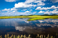 Landscape of grassland Stock Images
