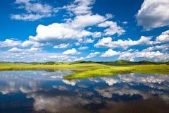 Landscape of grassland Royalty Free Stock Photography