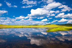 Landscape of grassland Stock Photos