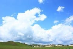 Landscape  of   grassland Royalty Free Stock Images