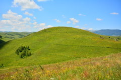 Landscape with grassland, green hill and blue sky. Royalty Free Stock Images