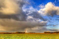 Landscape of grassland with rainbow at the horizon Royalty Free Stock Photos