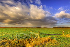 Landscape of grassland with rainbow at the horizon Royalty Free Stock Images
