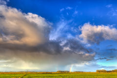 Landscape of grassland with rainbow at the horizon Royalty Free Stock Image