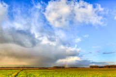 Landscape of grassland with rainbow at the horizon Stock Image