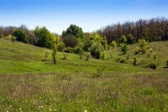 Landscape of a grassy valley, hills with forest and sky Stock Photography