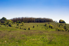 Landscape of a grassy valley, hills with forest and sky Stock Image