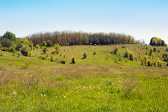 Landscape of a grassy valley, hills with trees and sky Royalty Free Stock Photography