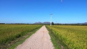 Landscape with a gravel road. In Spain overlooking the hills of Catalonia stock footage