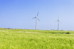 Landscape of green barley field and wind generato Stock Photos