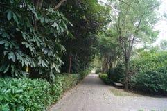 Landscape green belt Stock Images