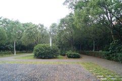 Landscape green belt Royalty Free Stock Photo